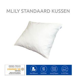 Kussen standaard